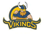 Viking Success Logo
