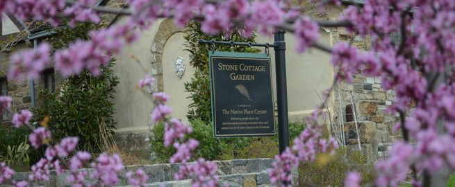 Photo of Stone Cottage Garden