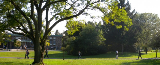 Students walking through scenic campus
