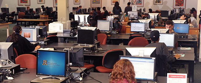 Students on Computers in the Harold L. Drimmer Library
