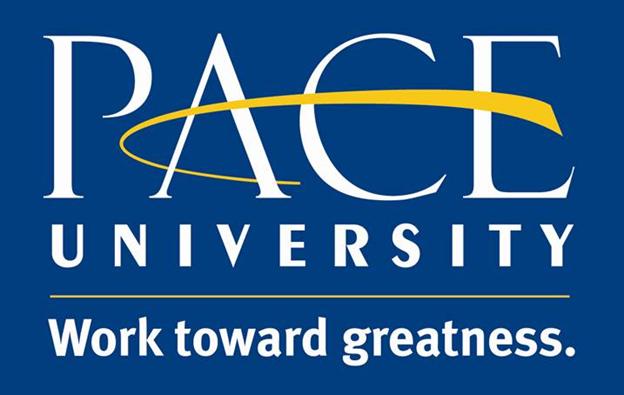 Pave University logo