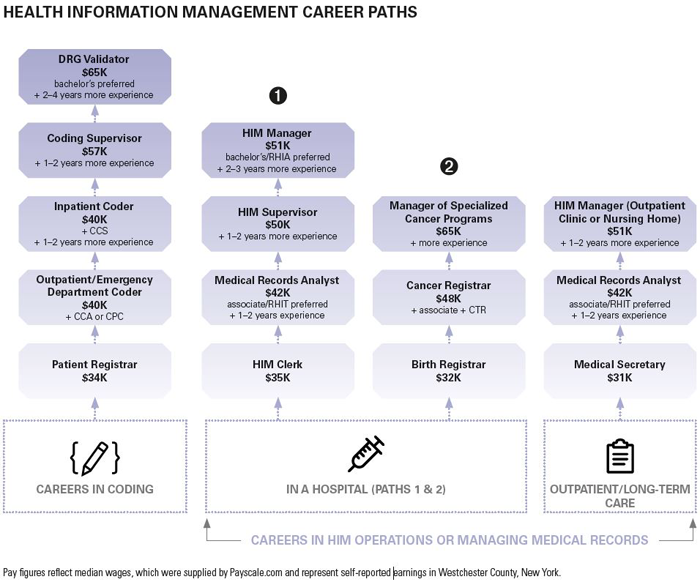 Image-6---Sample-career-paths-for-HIM