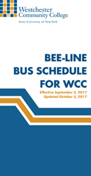 Beeline Bus Schedule Thumbnail Graphic