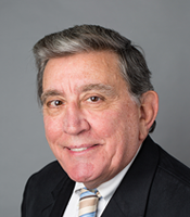 Photo of Hon. Andrew J. Spano Vice Chair