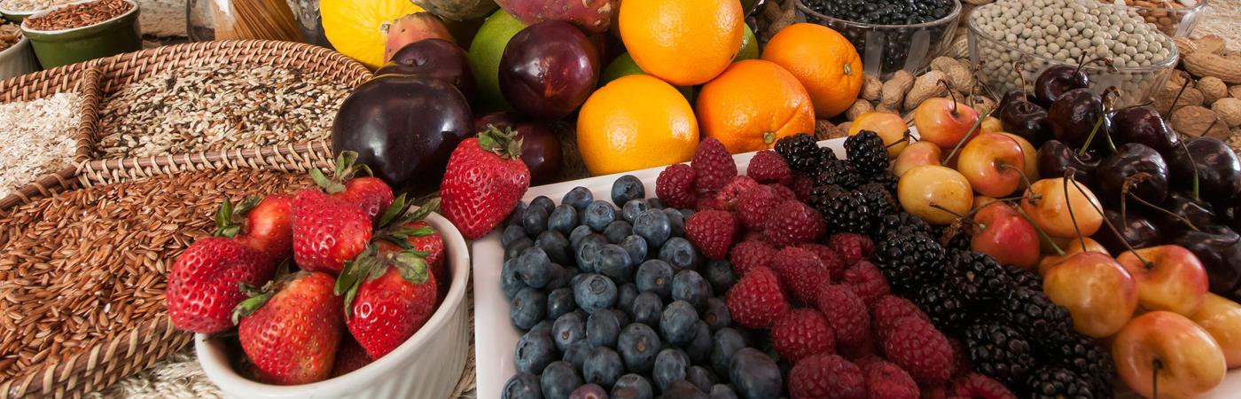 Nutrition header image