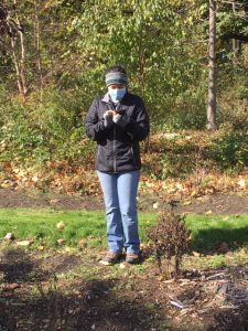 WCC Student Marisa Rodriguez collects data at the Native Plant Center, Valhalla Campus