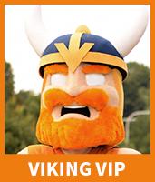 VIP_Viking